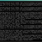 server-log